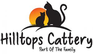 Hilltops Cattery