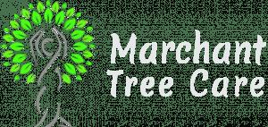 Marchant Tree Care logo